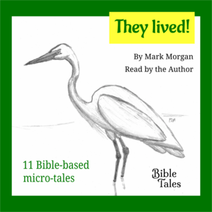 Bible Tales Books Audio: They Lived! (Bible-based fiction)