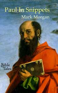 Book cover: Paul In Snippets (painting by Bartolomeo Montagna)
