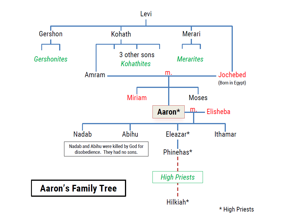 Image result for aaron bible family tree