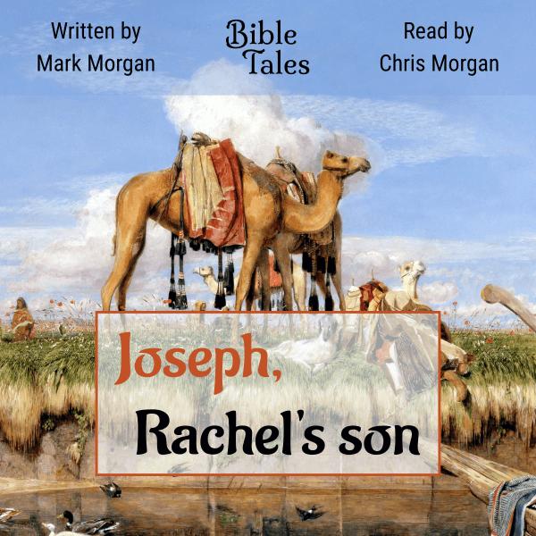 Joseph Rachel's son Audiobook cover