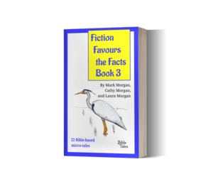 Fiction Favours the Facts – Book 3 (paperback)