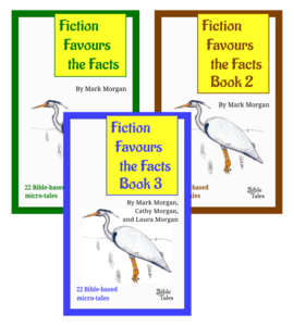 Fiction Favours the Facts Books 1 to 3: Bible-based microtales – eBooks